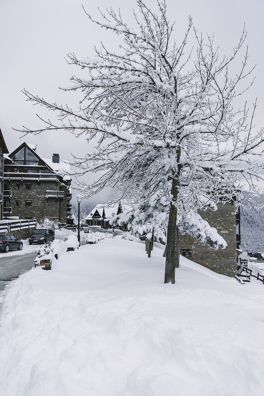 Pirineo-Baqueira